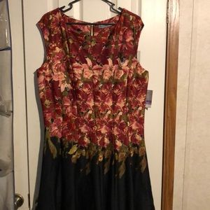 NWT Danny & Nicole Burgundy/Black floral dress 18